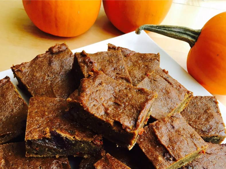 Pumpkin Spice Protein Bars | Nourished Body and Mind