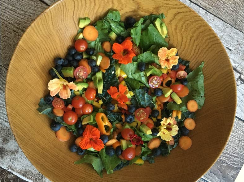 Nourished Body and Mind Rainbow Salad
