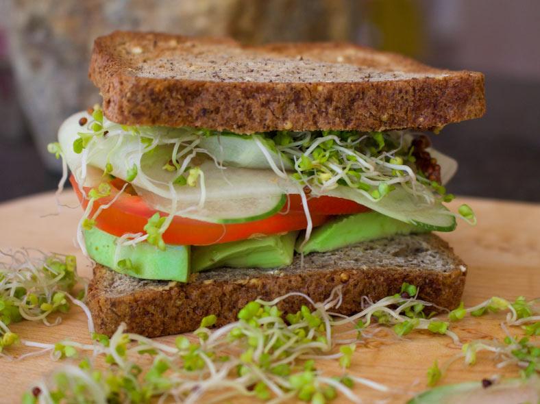 Creamy Avocado, Cucumber, Tomato Sandwich